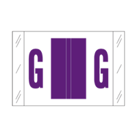 Tab Alpha Code Labels Letter G Purple 14107