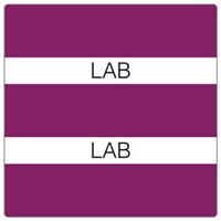 Patient Chart Index Tabs, Lab, Purple, 1-1/2 x 1-1/2, 102/Pk (52110)