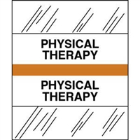 Medical Chart Index Tabs, Physical Therapy, Orange, 1/2 x 1-1/4, 100/Pk (54571)