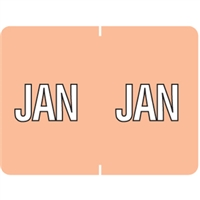 Datafile Month Label January 15/16 x 1-5/8 256/Pack