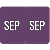 Datafile Month Label September 15/16 x 1-5/8 256/Pack