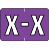 Barkley Alpha Labels Letter X Purple BRAM-X