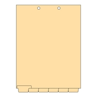 Blank Writable Chart Divider Sets, Letter Size, Bottom Tabs, 1/6th-Cut, 25 Sets (CBT21)