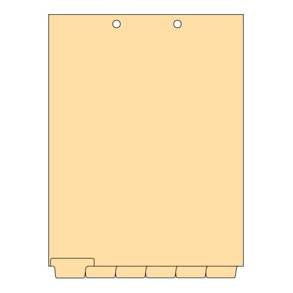 Blank Chart Dividers Letter Bottom Tab 150 Sheets/Bx (CBT21)