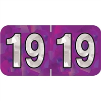 PMA Compatible Year Labels, 2019, Holographic Purple, 3/4 x 1-1/2, 500/RL