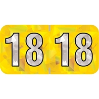 PMA Compatible Year Labels, 2018, Holographic Yellow, 3/4 x 1-1/2, 500/RL