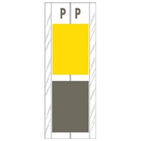 Acme Visible Label Letter P 4 x 1-1/2 102/Pack
