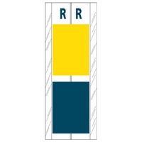 Acme Visible Label Letter R 4 x 1-1/2 102/Pack