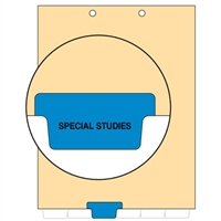 Chart Divider, Bottom Tab, Position 3, Blue, Special Studies, Pack/100