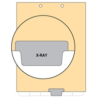 Chart Divider, Bottom Tab, Position 4, Gray, X-Ray, Pack/100