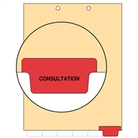 Chart Divider, Bottom Tab, Position 6, Red, Consultation, Pack/100