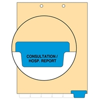 Chart Divider, Bottom Tab, Position 6, Blue, Consultation/Hospital Reports, Pack/100