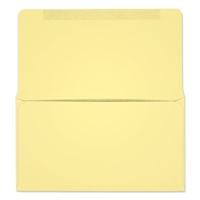 #6-1/4 Collection/Remittance Envelopes (W0252) 500/Box