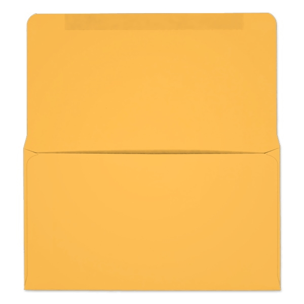 #6-1/4 Collection/Remittance Envelopes (W0253) 500/Box