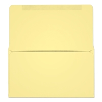 #6-3/4 Collection/Remittance Envelopes (W0263) 500/Box