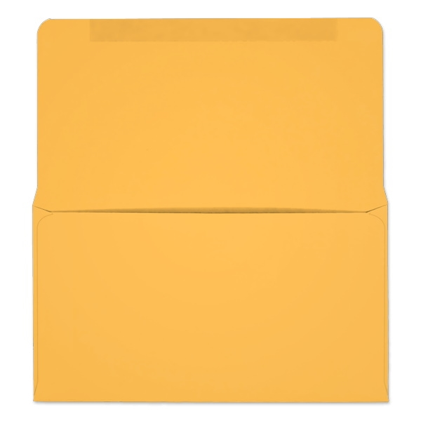 #6-3/4 Collection/Remittance Envelopes (W0264) 500/Box