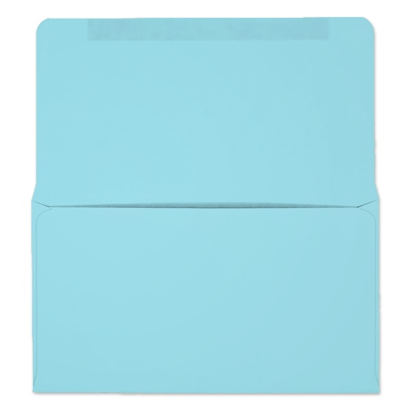 #6-3/4 Collection/Remittance Envelopes (W0267) 500/Box