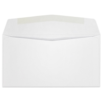 Western Sulphite Side Seam Regular Envelope (No. 6-3/4) 0425