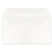 Western Sulphite Side Seam Regular Pres-Stik Envelope (No. 6-3/4) 0428