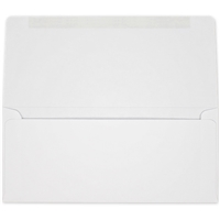 #6-3/4 Collection/Remittance Envelopes (W0462) 500/Box