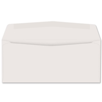 Western Sulphite Side Seam Regular Envelope (No. 8-5/8) 1753