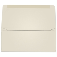 #9 Collection/Remittance Envelopes (W2169) 500/Box