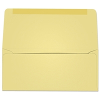 #9 Collection/Remittance Envelopes (W2172) 500/Box