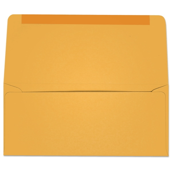 #9 Collection/Remittance Envelopes (W2173) 500/Box