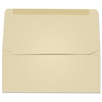#9 Collection/Remittance Envelopes (W2178) 500/Box