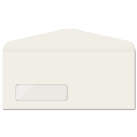 Western Sulphite Window Envelope (No. 9) 2327