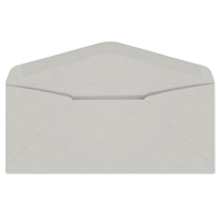 Western Fiber-Added Regular Envelope (No. 10) 2579