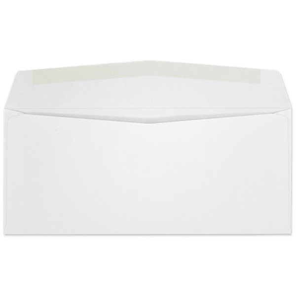 Western Sulphite Side Seam Regular Envelope (No. 10) 2641
