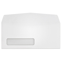 Western Sulphite Side Seam Window Envelope (No. 10) 3338