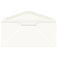 #11 Western Sulphite Regular Envelope (W3376)