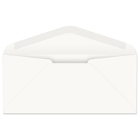 #12 Western Sulphite Regular Envelope (W3527)
