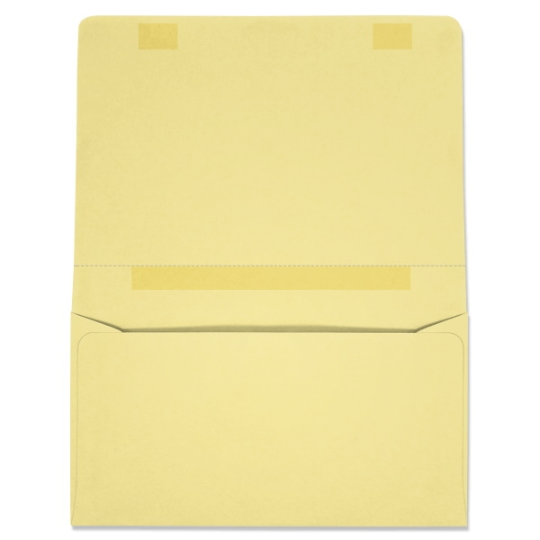 Dual Purpose Mailer (W3870) 500/Box
