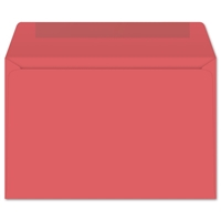 Starburst Open Side Booklet (6x9 Envelope) 7362
