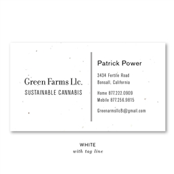 Seeded Paper Business Cards | No2