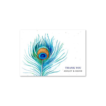 Watercolor Thank you notes ~ Delicate Peacock (Peacock, White)
