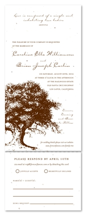Plantable Wedding Invitations - Family Tree