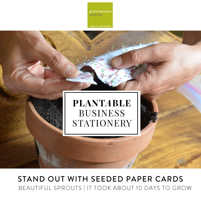 Plantable Business Cards On Seeded Paper Grow Flowers By Green