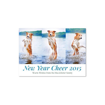 Pet Holiday Photo Cards | Jump for Joy (100% recycled paper)