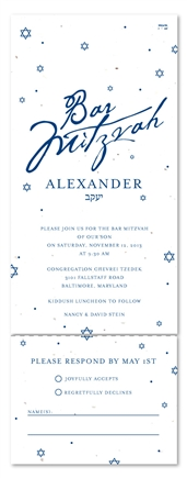 Bar Mitzvah Invitations - L'Chaim (Send and sealed format)