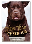Pet Holiday Cards | The Lab (100% recycled paper)
