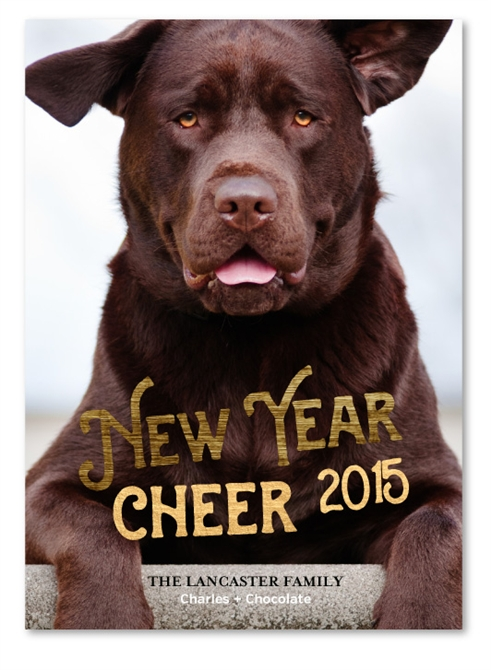 - Pet Holiday Cards