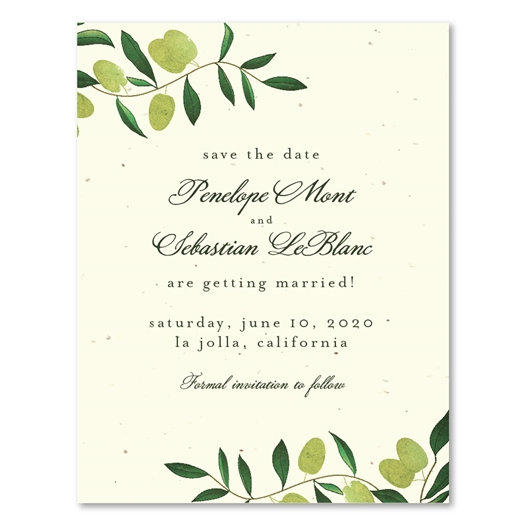Tuscany Olive branches wedding save the date cards on cream seeded paper