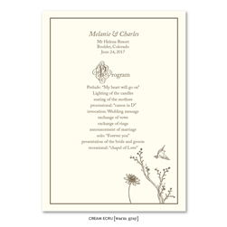 unique wedding romantic Programs - Our Story (cream and brown)