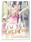 Glitter Holiday Cards | Down the Slide (100% recycled paper)