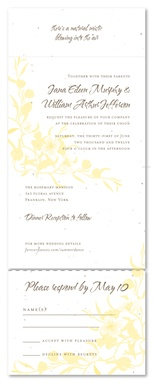 Seed Paper Invitations - Summer Dance by ForeverFiances Weddings