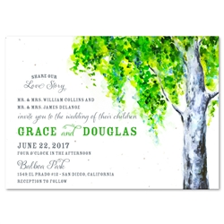 Birch Tree Wedding Invitation on plantable paper ~ Summer Birch Tree by ForeverFiances Weddings